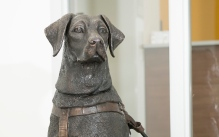 Bronze dog sculpture on display in Centennial Hall at UW-Eau Claire